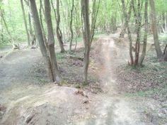 [Seine-Maritime] Parcours en forêt de Roumare Départ un peu difficile de Saint-Martin-de-Boscherville avec montée raide vers Le Genetey. Une fois en forêt, la première moitié du parcours se fait par des chemins forestiers.  Retour ludique par des singles: Le Valnaye puis Quevillon (Il y a un dirt-park improvisé au km 21,3) pour finir par la descente de Saint-Gorgon qui est toujours très fun.