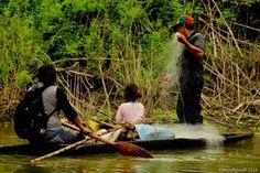 Onde el Mono: Pescando Ilusiones