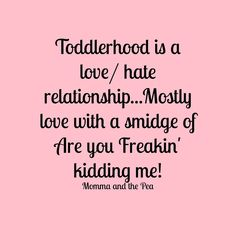"""Toddlerhood is a love/hate relationship...mostly love with a smidge of are you freakin' kidding me!?"""