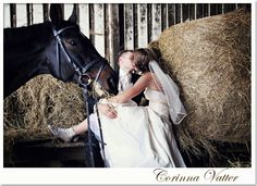 After Wedding shot with Horse | wedding photographer | Hochzeitsfotograf Corinna Vatter, Duisburg, Germany