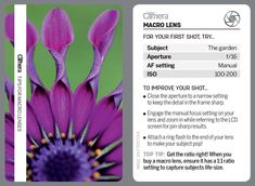 44 tips cards for photographers to cut out and keep or browse on your phone! Landscape Photography Tips, Aerial Photography, Night Photography, Landscape Photos, Scenic Photography, Digital Camera Magazine, Digital Camera Tips, Photography Settings, Camera World