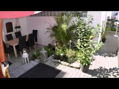 Hotel Stern - Vockenhausen - Visit http://germanhotelstv.com/restaurant-stern Featuring its own garden and terrace Hotel Stern offers rooms with free WiFi in the quiet town of Eppstein a 20-minute drive from Frankfurt am Main.  The bright rooms at Hotel Stern are decorated in a modern style. -http://youtu.be/A6szYiDVrQU