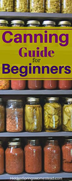 "Learn the basic of canning food. All your questions answered in one place. Includes recommended resources, information about utensils, tools, water-bath canning and pressure canning. Easy to follow ""what to"" guide for canning food."