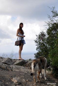 Katia Verza: MA PERCHE' IL CANE LUPO CECOSLOVACCO QUANDO LO CHI...