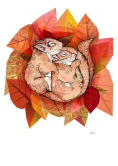 Squirrel Spoon  by Sandra Dieckmann Illustration