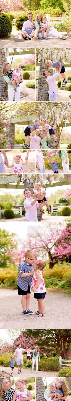 family photographer lexington ky