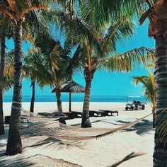 O mês de outubro chegou e novas possibilidades de viagens também! Nas Ilhas Maurício é época de primavera, com a temperatura esquentando, menos chuvas e umidade. Clima perfeito para uma visita. Confira em nosso Stories outros destinos para conhecer neste mês de outubro! #october #travelinspiration #travelguide