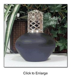 "Don't want your man friend to burn his apartment down with candles...give him one of these! Redolere Fragrance Lamp in ""Bullfrog Black"". Best price I've seen yet! $15.95 on TheLampStand.com"