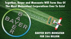 Bayer Buys Monsanto For $66 Billion Creating The World's Most Malevolent Corporation!