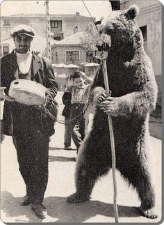 AYI OYNATICI (making a bear dance). Picture from the Bear leading was banned in Turkey around Old Photos, Old Pictures, Vintage Photos, Middle East Culture, Ottoman Empire, Historical Pictures, Istanbul Turkey, Traditional Art, My Images