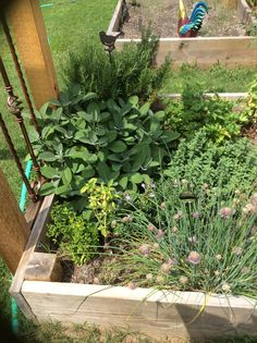 1000 images about spring summer 2015 garden on pinterest for Spring hill nursery garden designs
