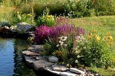 Amazing ideas for small backyard landscaping - Great Affordable Backyard ideas Pond Landscaping, Farmhouse Landscaping, Landscaping With Rocks, Landscaping Software, Pond Design, Landscape Design, Garden Design, Landscape Photos, Backyard Water Feature