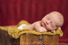 www.sarahbel.com Bassinet, Babies, Furniture, Home Decor, Crib, Babys, Decoration Home, Room Decor, Baby