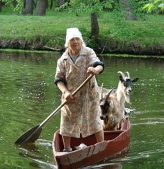"Goats in a boat. A boss once said,""We are all in the same boat together, and we need to all help row."" Makes one wonder doesn't it?"