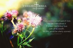 Photographer: Chelsea Tornga Photography  Scripture:Song of Solomon 8:7  Many waters cannot quench love, neither can the floods drown it: if a man would give all the substance of his house for love, it would utterly be contemned.