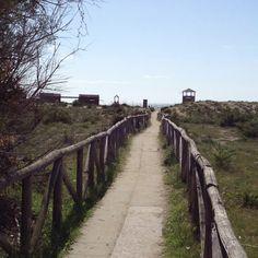 Going to the beach- marina vecchiano (PI) - italy