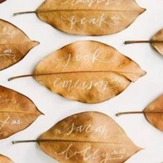 place card ideas - Google Search