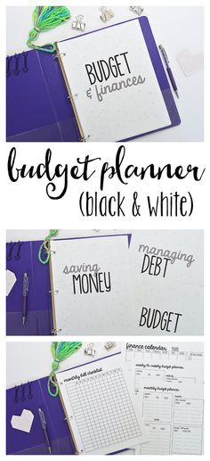 $5. Budget Planner Printables, Letter Size printables for your Budget Binder, 17 Pages Included.