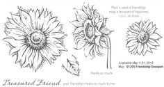 Friendship Bouquet May 2012 SOTM