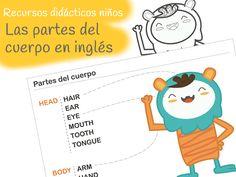 Partes del cuerpo, ingles niños. Free printable body parts vocabulary