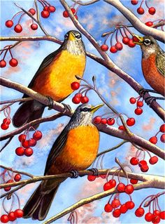 Three Robins Painting by Catherine G McElroy - Three Robins Fine Art Prints and Posters for Sale