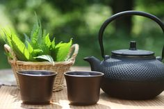Healing PMS and Menstrual Problems with Nettle Tea