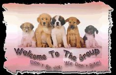 free welcome to our group Welcome New Members, Welcome To The Group, Welcome To My Page, Welcome Pictures, Welcome Images, Interactive Facebook Posts, Dog Themed Parties, Group Of Dogs, Dog Groups