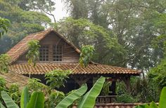 Typical costa rican houses. Costa Rica, American Houses, Project Ideas, Beautiful Homes, Sims, Future, House Styles, Old Houses, Pura Vida