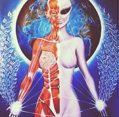 """Bridget Nielsen - """"... As many of us know, part of the human ascension/awakening process is activating our DNA to its full potential. ... As Bashar says, we have """"a mini-Galactic Federation"""" in each of us and to make contact we'll need to fully know with every fiber of our being that we are the aliens… the aliens are us.. literally, in DNA we're made from and the parallel incarnations we'll meet face to face. When that realization becomes knowingness/kenned, contact will occur."""" 