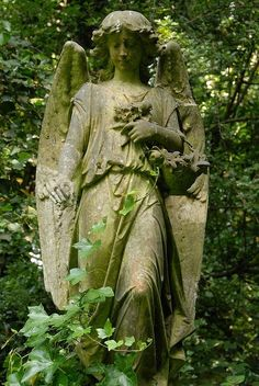 One of the many gorgeous angel statues at Highgate Cemetery in London.