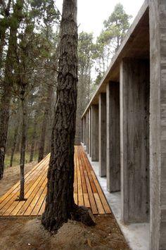 Concrete House by BAK Architects