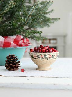 syflove:cranberries