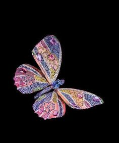 Butterfly from Wallace chan