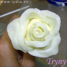 """Como hacer Rosas / Cold porcelain """"How to make Roses"""" Cold Porcelain, Decoupage, Clay, Plaster, Rose, Bella, Flowers, How To Make, Cold"""