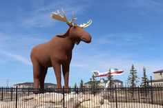 15 Most Charming Small Towns in Canada Natural Scenery, Canadian Rockies, Great Lakes, Small Towns, Moose Art, Road Trip, National Parks, Canada, Warm
