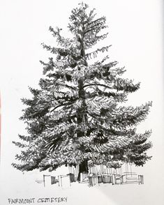 Some trees done for #inktober.