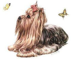 Laminas decoupage: Laminas de animales, perros ,gatos, peces, caballos, antiguas , modernas...infantiles..