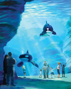 A rendering of Blue World Project at SeaWorld, which will offer larger environments for orcas at its three theme parks.