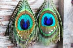 peacock feather earrings with crystals - Google Search