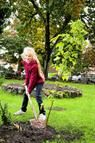 That tree you planted for Mom in 1972 can now be in your backyard. Air layer it! Air Layering, Grow Kit, Garden Sculpture, Backyard, Hacks, Mom, Outdoor Decor, Plants, Patio