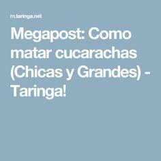 Megapost: Como matar cucarachas (Chicas y Grandes) - Taringa!