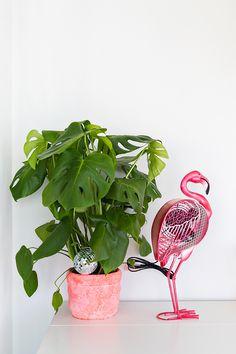 Os mais diversos estilos para você decorar! #havan #decor #home #decoracao #room #colors