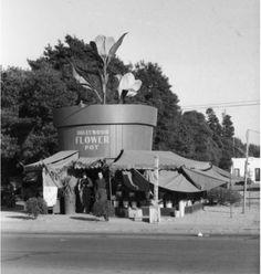 The Hollywood Flower Pot - 1124 Vine Street, a flower shop inside a giant flower pot built in 1930