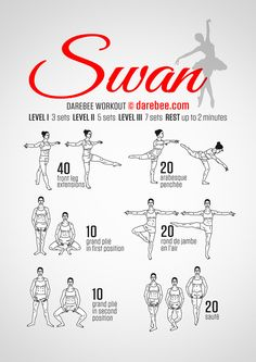 legs and core. Added this to the Total Body Barre. Plus the 20 minute beginner…