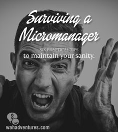 Surviving a Micromanager- 6 tips to maintaining your sanity and some level of control when working with a micromanager. | WAH Adventures
