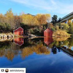 Møre og Romsdal. #reiseliv #reiseblogger #reisetips #reiseråd  #Repost @astridstoroy (@get_repost)