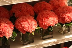 Carnation cube centerpieces