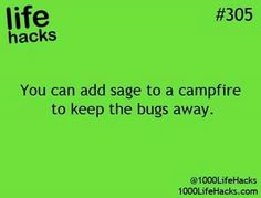 This will come in handy bc my bf hates bugs!