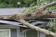 Winter is coming, and so are the storms. 2015 has been and insane year for weather. Follow these tips to safeguard your home. www.pinterest.com/harleyexteriors