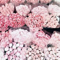 A dozen roses, bottled. Like thousands of petals from a bouquet of fresh cut ro… - Beautiful Flowers